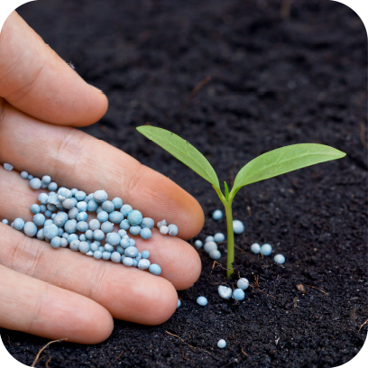 Agro, Seeds & Fertilizers